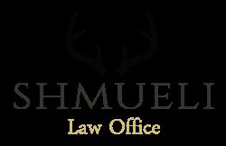 """עו""""ד דיני משפחה Law Shmueli"""
